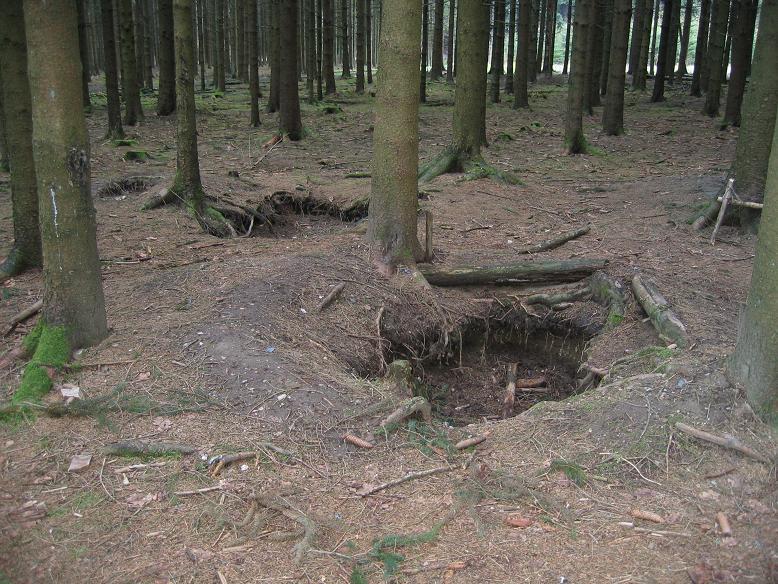 Foxholes (skyttevärn) i skogarna kring Foy