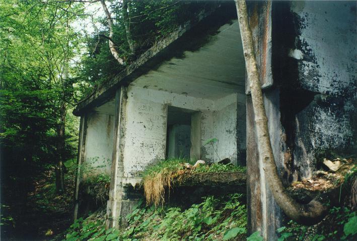Ruiner efter Hitlers tehus på Mooslahnerkopf (1997). Ruinerna togs bort 2006