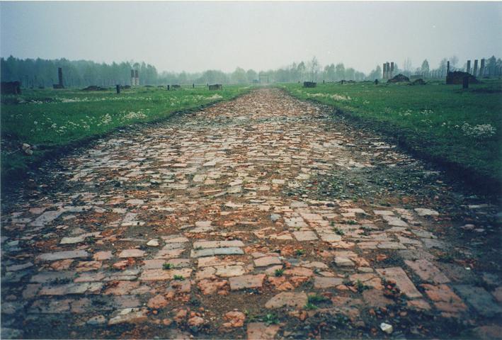 Auschwitz II - Birkenau: Sektion BII