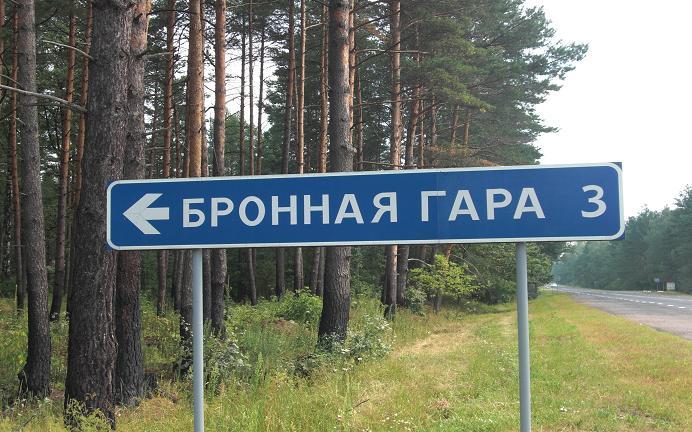 Bronnaya Gora