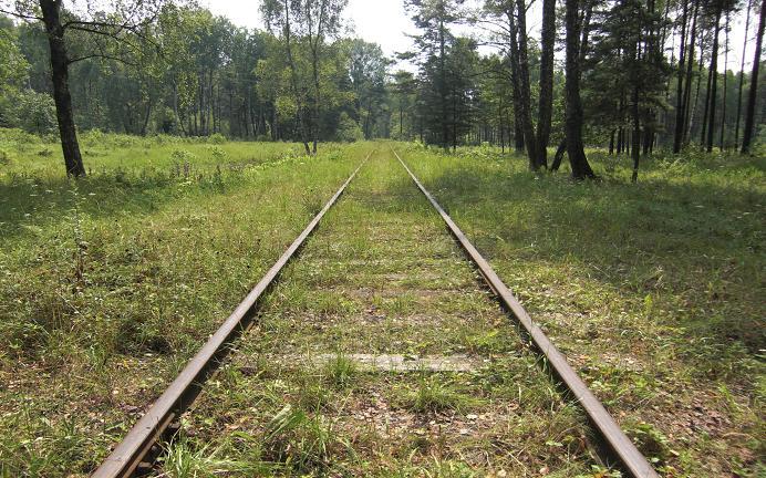 Eftertida järnvägsspår som går tvärs igenom massgravarna