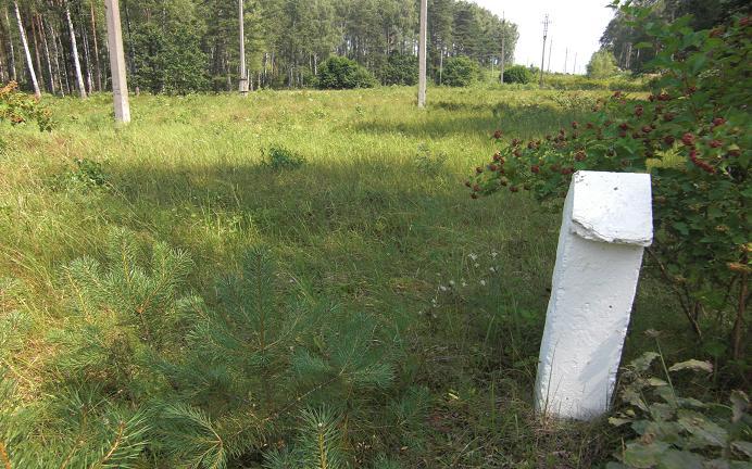 Små vita pilar markerar området kring massgravarna. Observera kraftledningarna som löper tvärs igenom massgravarna