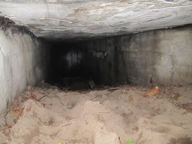 Inuti Görings bunker (2013)