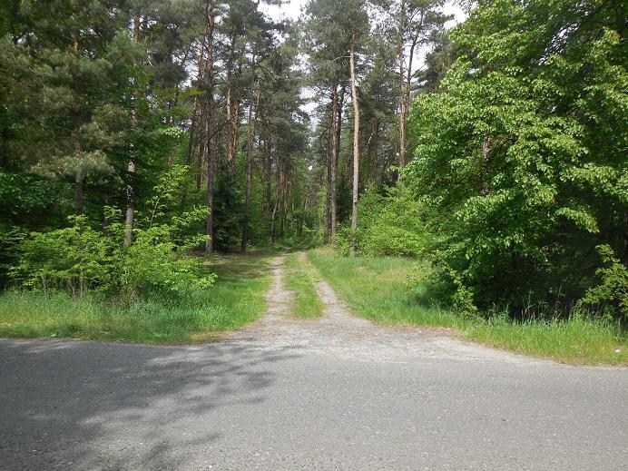 Waldlager: F.d. lägerentrén genom gasvagnarna körde in