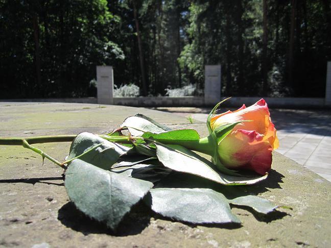 Heidekyrkogården