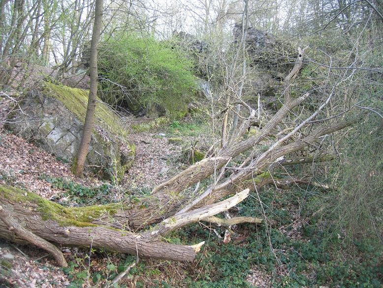 Ruiner efter Hitlers bunker