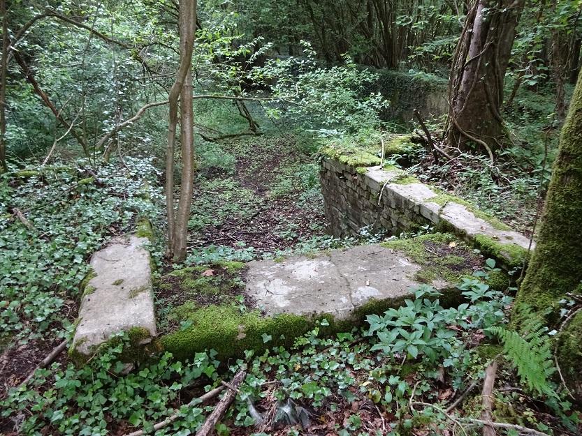 Ruin i skogen intill järnvägstunneln