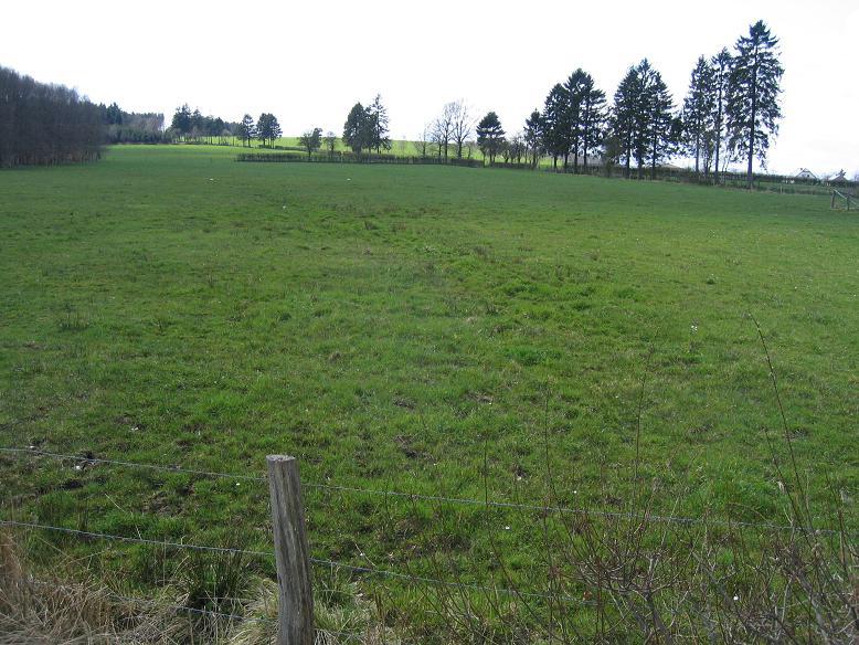 Fältet där de amerikanska krigsfångarna sköts ner