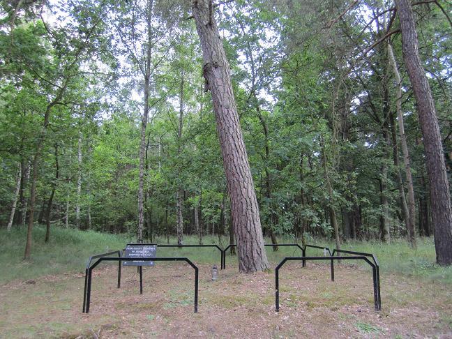 Från detta träd hängdes människor