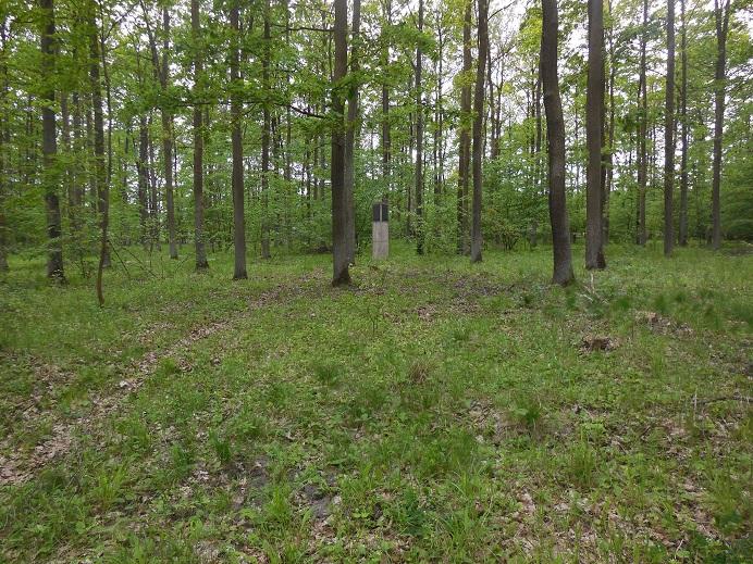 Monument inne i skogen