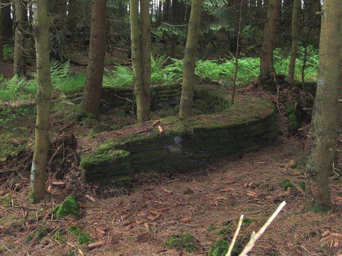 Ruin vid tehuset vars syfte är okänt