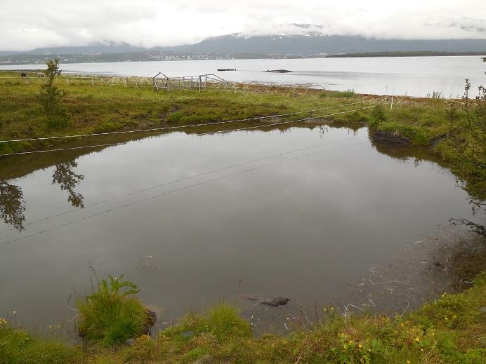Vattenfylld krater efter en Tallboy
